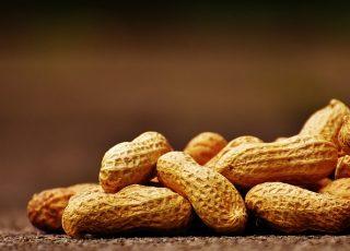 Qu'est ce que l'hypersensibilité alimentaire?